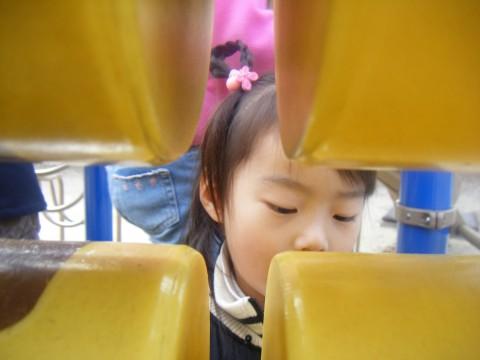2008_01270008