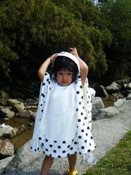 2008_06070008