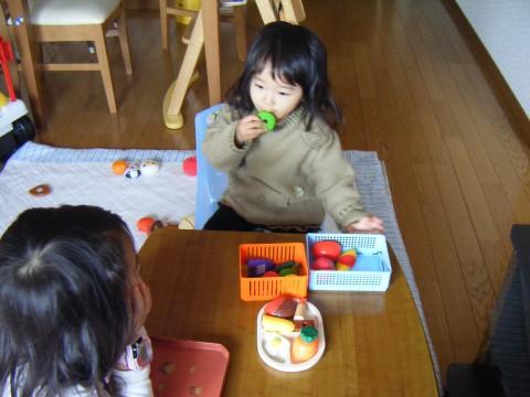 2008_01060006